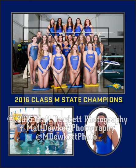 Brookfield Swimming Memory Mates 2016